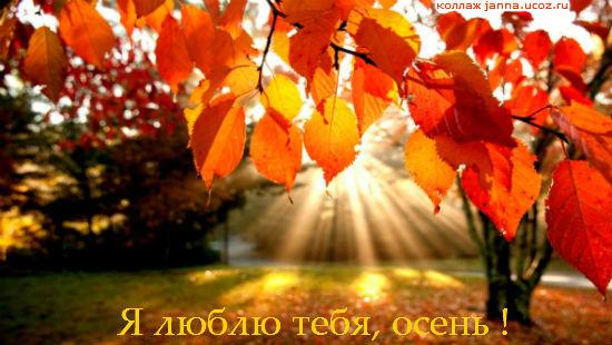 Я люблю тебя, осень ..!