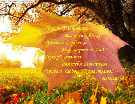 Картинки с пожеланием красивой осени