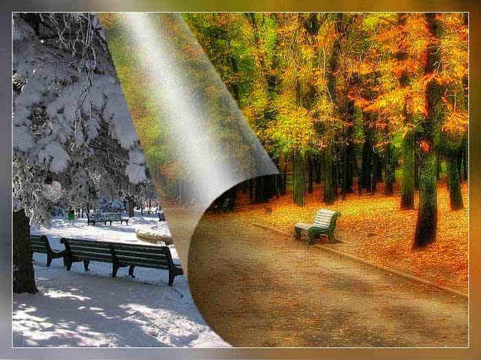 Осень ~ зима ...