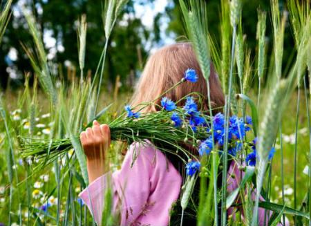 Лето. Девочка с васильками в поле