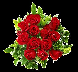 Поздравляем с Днем Рождения Анжелику Николаевну! 00534342