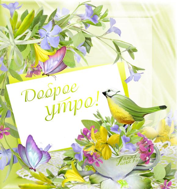 открытка доброго весеннего дня человека нет