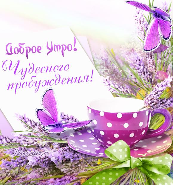 Летние открытки - Доброе Утро! Чудесного Пробуждения!