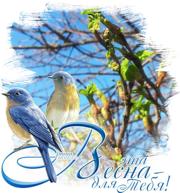 Весенние открытки - Пожелания