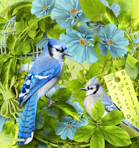Летние открытки - Добрый День