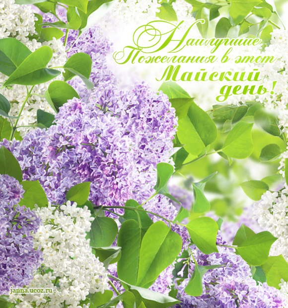 Весенние открытки - Наилучшие пожелания в этот майский день!