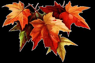 Пусть Ваша осень будет ~ Счастливой ..!